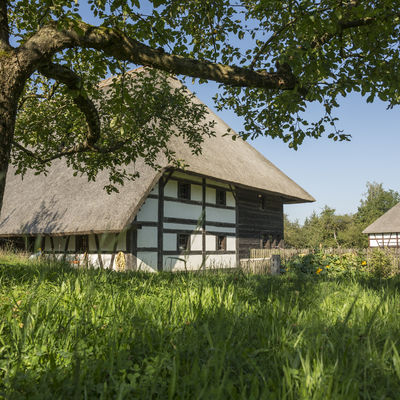 An old half-timbered farmhouse with a deep reeddack stands on a lush green meadow.